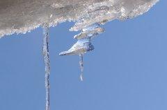 ghiaccio.jpg