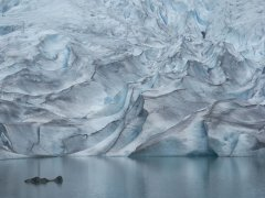 ghiacciaio.jpg